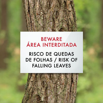 Funny Portuguese Sign Fail. Backyard Sign. Outdoor Sign. Risk of Falling Leaves