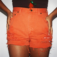 Orange spring high waisted shorts