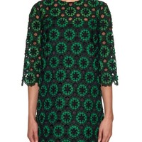 Embroidered floral-lace dress | Dolce & Gabbana | MATCHESFASHION.COM US