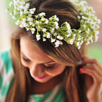 Flowers By Jowers: Babys Breath | Hope's