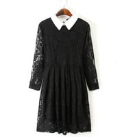 Brianna Black Lace Collared Mini Dress