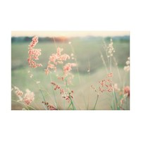 Pink Wild Flowers in a Grass Field Canvas Print