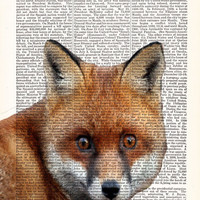 Red Fox Face -Dictionary Print Book Print, Page Art, Antique Book Page-Print On Dictionary Book Page-Upcycled Book Page, art poster