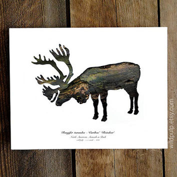 Caribou Silhouette In Bark : Nature Theme Eco Decor, Woodland Animal Photography - Rustic Lodge, Home Antler Art, Wild Pulp