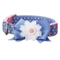 Bond & Co. Blue Dot Double Bow Dog Collar | Petco Store