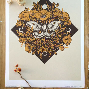 """By the Moonlight, Polyphemus Moth, California Poppies, Moon Phases, Two-Color, Archival Fine Art Inkjet Print, Giclee Print, 11x14"""""""