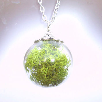 Real Moss Orb Sphere Glass Large Round Terrarium Pendant Necklace