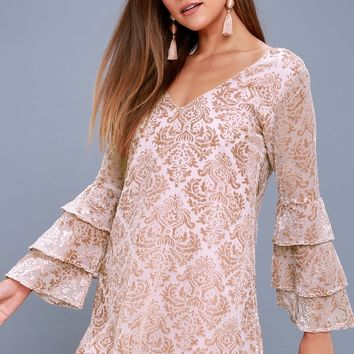 Shine On Blush Burnout Velvet Shift Dress