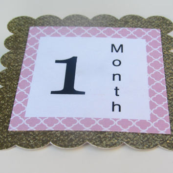 12 Month Photo Banner, First Year Photo Banner, First Year Banner, Baby 12 Month Signs, 1st Year Baby Banner, 1st Year Photo Mini Clips