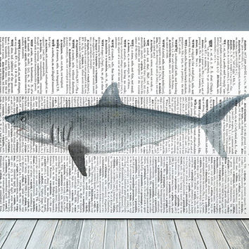 Nautical poster Shark print Watercolor print Marine decor RTA2176