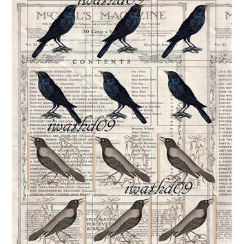 Crow digital clip art bird collage sheet instant download commercial use 1913 McCalls magazine raven blackbird art journaling tags