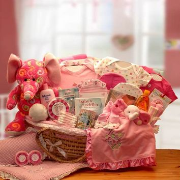 Precious Petals Deluxe Moses Carrier Gift Basket - Pink