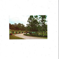 1950s, 1960s Color Photo Print of Richland Heights Motor Court, Gainesville, Florida, Unposted, Travel Souvenir, AAA, Vintage Motel Ephemera