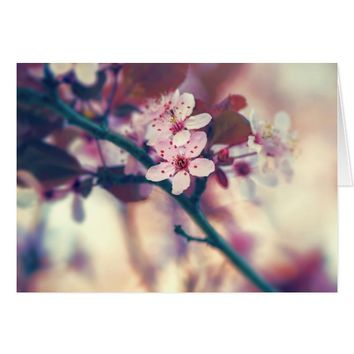 Cherry Blossom - Sakura - Greeting Card