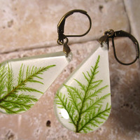 Stair Step Moss (Hylocomium splendens) aka Mountain Fern Moss Earrings