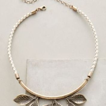 Jill Schwartz Silviculture Collar Necklace in Gold Size: One Size Necklaces