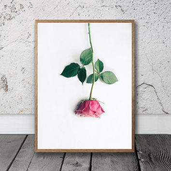 Rose Print - Flower Wall Art, Pink Rose Wall Art, Digital Print, Rose Photograph, Chic Print, Simplistic Art, Pink Decor, Trendy Wall Art