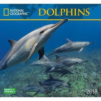 Dolphins NG Wall Calendar, Whales | Dolphins by Zebra Publishing