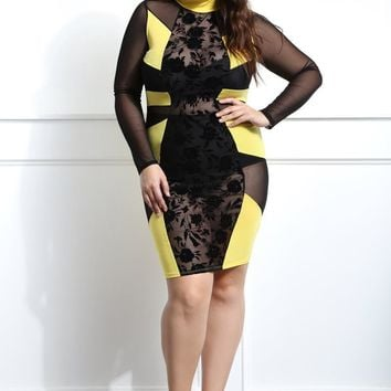 Showstopping Sheer Mesh Club Party Plus Size Bodycon dress