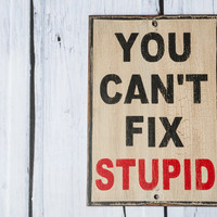 You can't fix stupid sign, rustic hand painted wood sign, ron white quote, cure for stupidity, farmhouse decor, funny office sign or garage