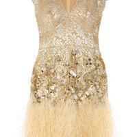 Matthew Williamson | Feather and crystal-embellished lace dress | NET-A-PORTER.COM