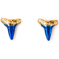 Electric Blue Small Shark Teeth Studs