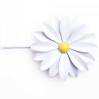 Daisy Bobbi by ban.do