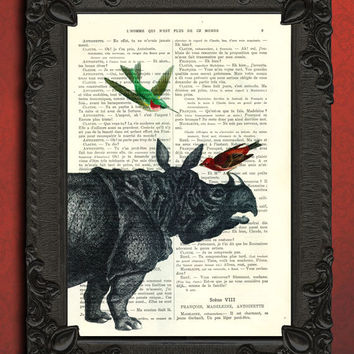 Rhino and hummingbird, rhino vintage dictionary print - hummingbird print, safari
