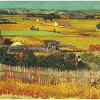 Harvest at La Crau Wheatfields Van Gogh Art Poster 11x17