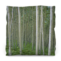 Birch In Uncompahgre National Forest Throw Pillow