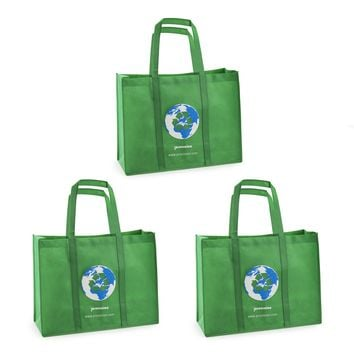 Reusable Grocery Tote Shopping Heavy Duty Bag (Small Set of 3)