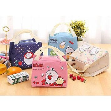 Portable Childrens Kids Lunch Bags Insulated Cool Bag Picnic Bag School Hanging Lunchbox