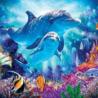 Dolphin Guardian 500pc Jigsaw Puzzle