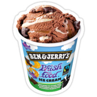 Ben & Jerry' Phish Food Ice Cream