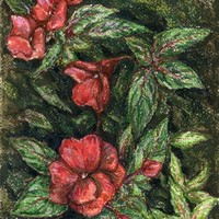 Antique Flowers original soft pastel and ink painting - LinanDara's Art-n-Folk