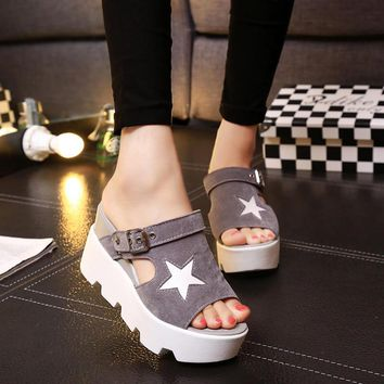 SUMMER STYLE Platform Sandals Shoes Women Slippers High Heel Casual Shoes Open Toe Sandals Gladiator Trifle Sandals Women Shoes