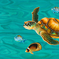 Kauila Sea Turtle Painting by Emily Brantley - Kauila Sea Turtle Fine Art Prints and Posters for Sale