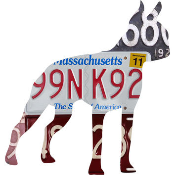 Massachusetts License Plate Boston Terrier