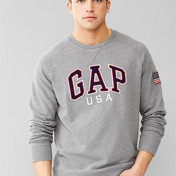 Gap Men Arch Logo Flag Sweatshirt