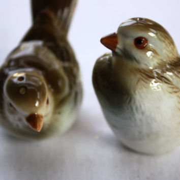 Beautiful Vintage Bone China Bird Salt and Pepper Shakers