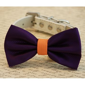 Orange and Purple wedding Dog Bow Tie, Pet Wedding accessory