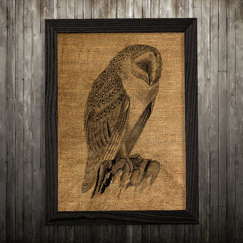 Animal print Owl poster Bird print Burlap art BLP182