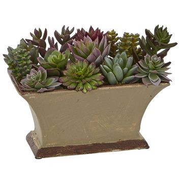Artificial Plant -Mixed Succulent with Vases Silk Plant