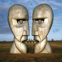 Pink Floyd - The Division Bell (20th Anniversary) 2LP