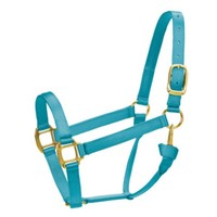 Premium Horse Halter, Small, Ocean Blue - Tractor Supply Co.