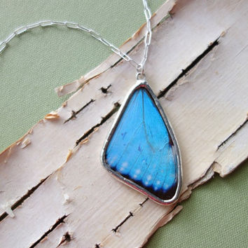 Small Blue Morpho- Full Butterfly Wing Necklace, bohemian jewelry, summertime, natural, statement