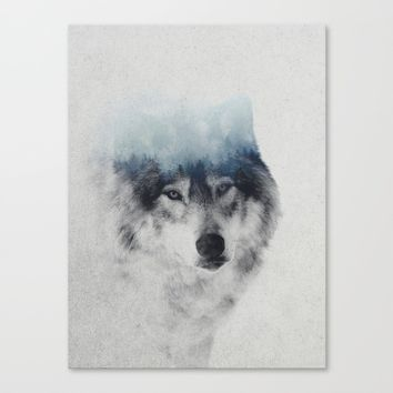 Grey Wolf In Fog Canvas Print by Andreas Lie