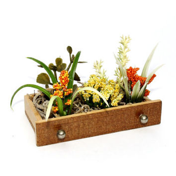 Fairy Garden Miniature Plants in Upcycled Vintage  Dollhouse Furniture Planter
