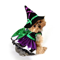 Scary Witch Dog Costume - Medium