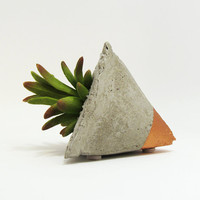 Succulent Planter, Concrete Planter, Air Planter, Modern Planter, Geometric Planter, Mini Planters, Cement Planter, Mini Planter, Bronze
